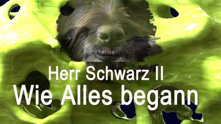 Herr Schwarz II – Wie alles begann | Trailer